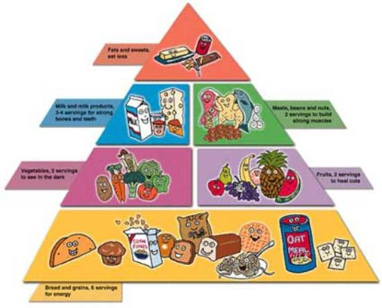 Pictures Of Healthy Foods For Kids