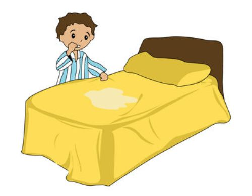 Causes Of Nighttime Bedwetting In Adults