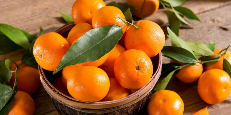 Why You Should Eat Oranges Everyday: 7 Hidden Health Benefits